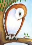 Watching Owl