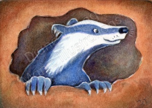 ACEO happy Badger