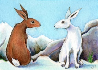 Painting of a Mountain hare and Brown Hare by Diane Young artist