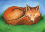 Sleeping Fox painting by Diane Young available as a Commission Me This Design