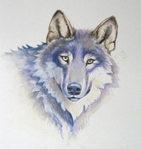 Painting of a wolf by Artist Diane Young