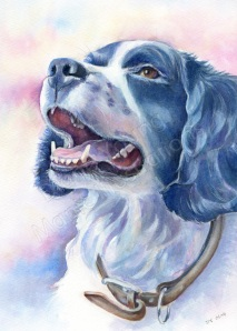 A  painting of a dog portrait by artist Diane Young