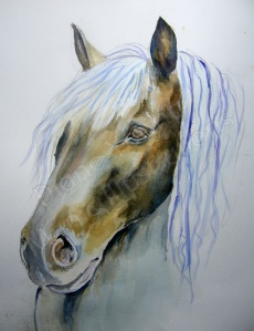 Horse-Head-sketch-painting by Artist Diane Young of Manic Illustrations
