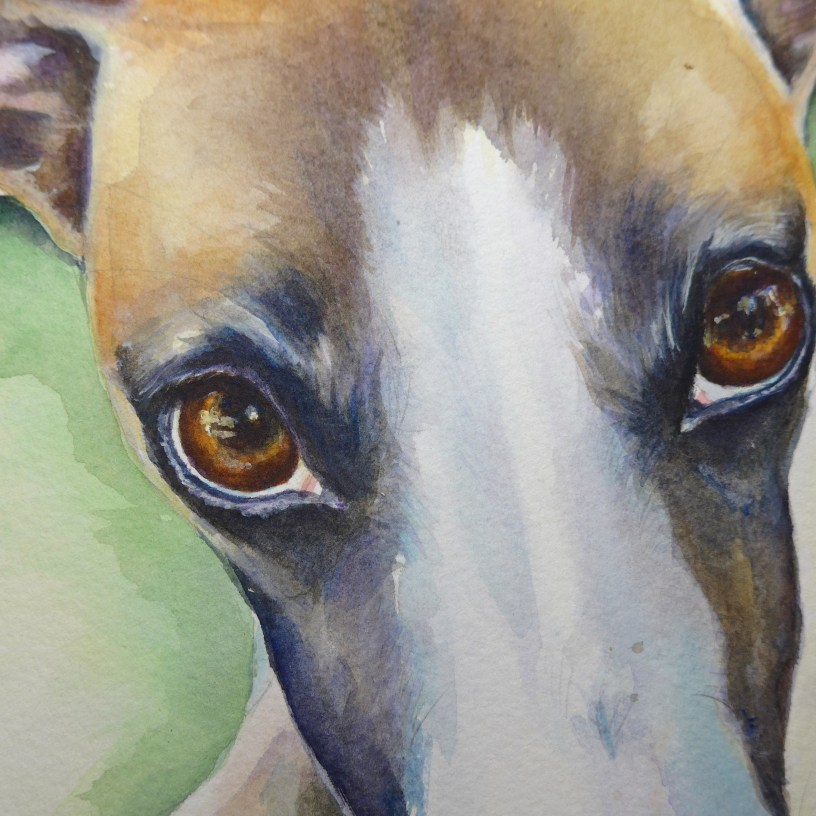 Whippet painting WIP (2) Close up by artist Diane Young