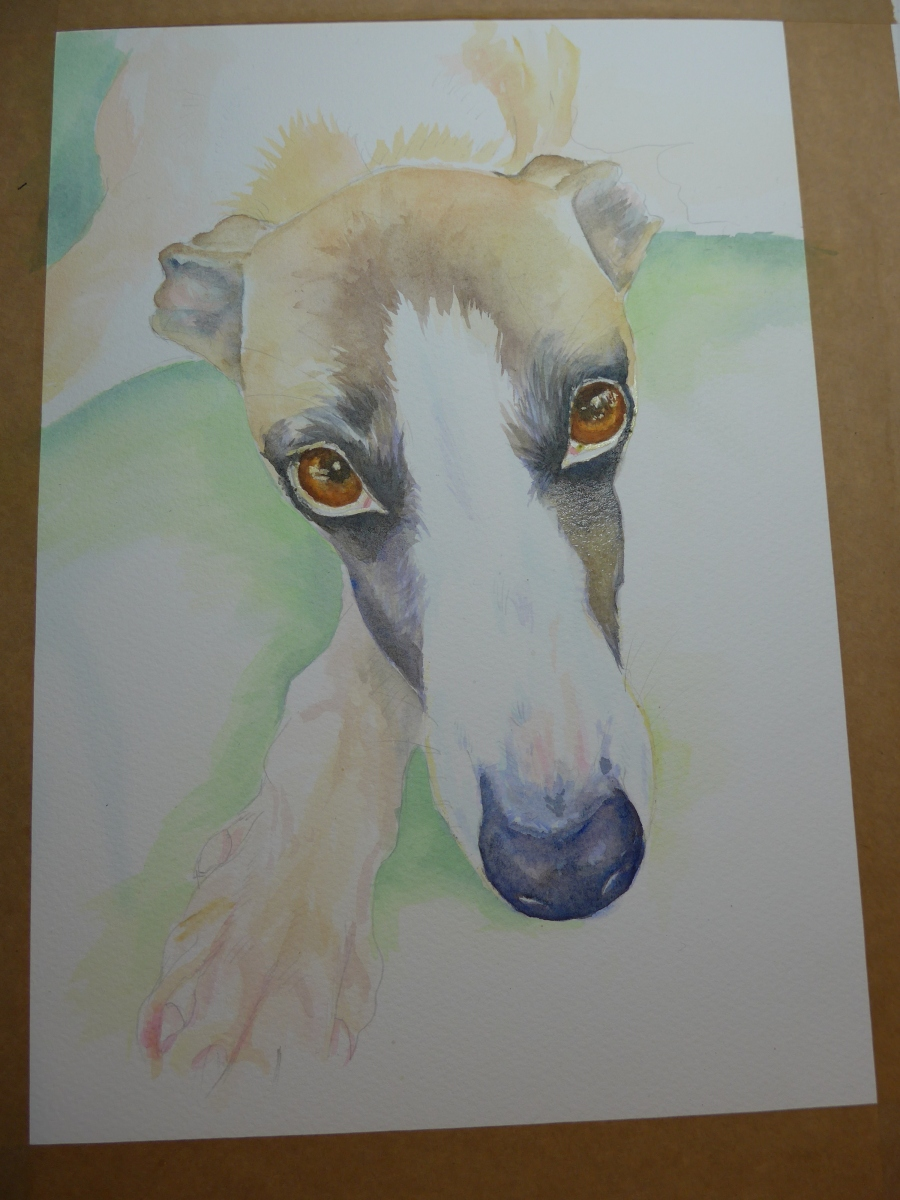 Whippet painting Work In Progress by artist Diane Young