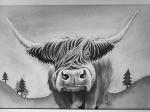 Monochrome photo of painting of Highland Cow by Diane Young
