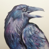 SOLD Raven