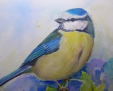 Blue Tit Chickadee painting by artist Diane Young