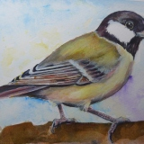 ORIGINAL FOR SALE Great Tit