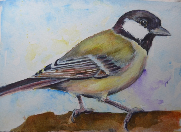 Great Tit perched on a tree Painting by Artist Diane YOung