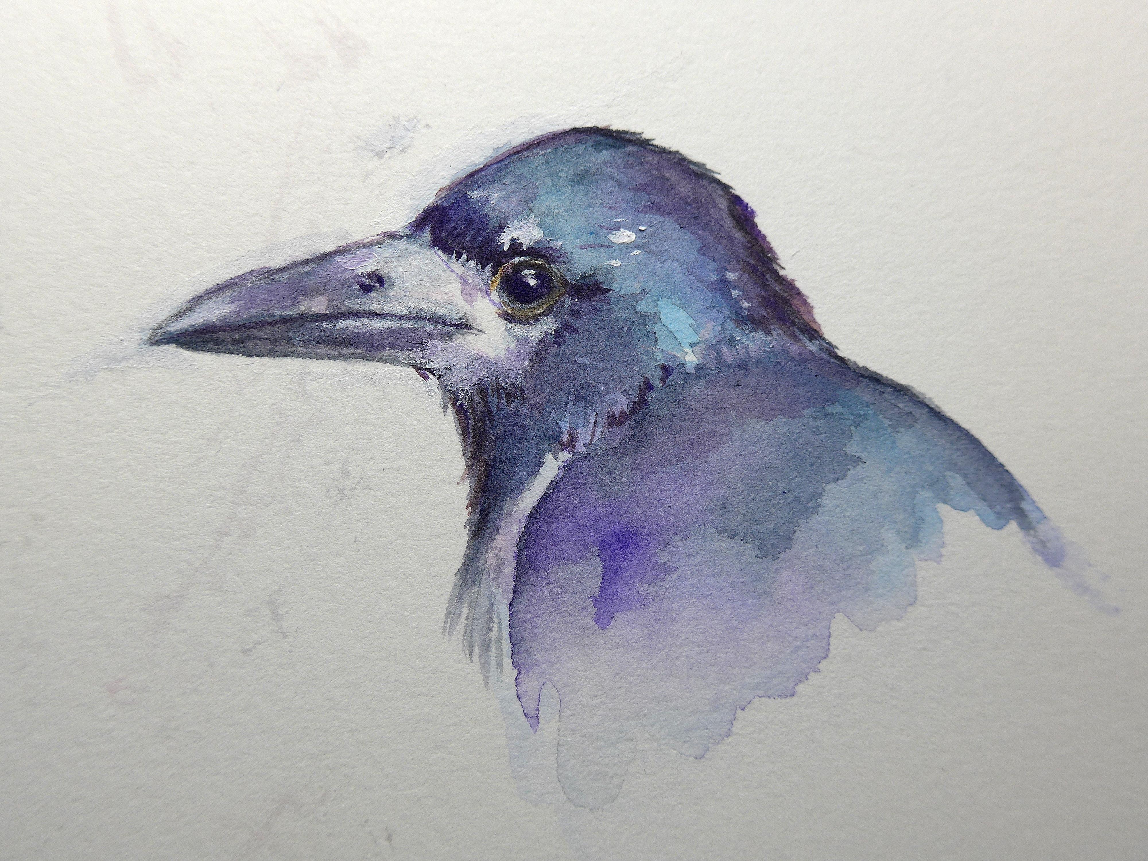 rook-portrait-paint