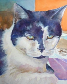 Painting of a cat with a more painterly approach by artist Diane Young