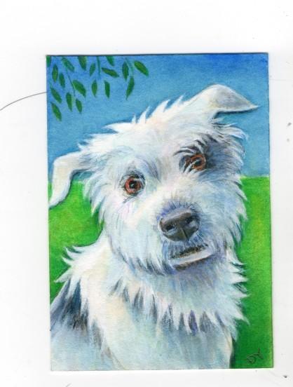 Cheeky Terrier 600dpi