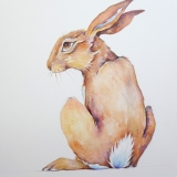 Painting of a Hare, Dreaming by artist Diane Young