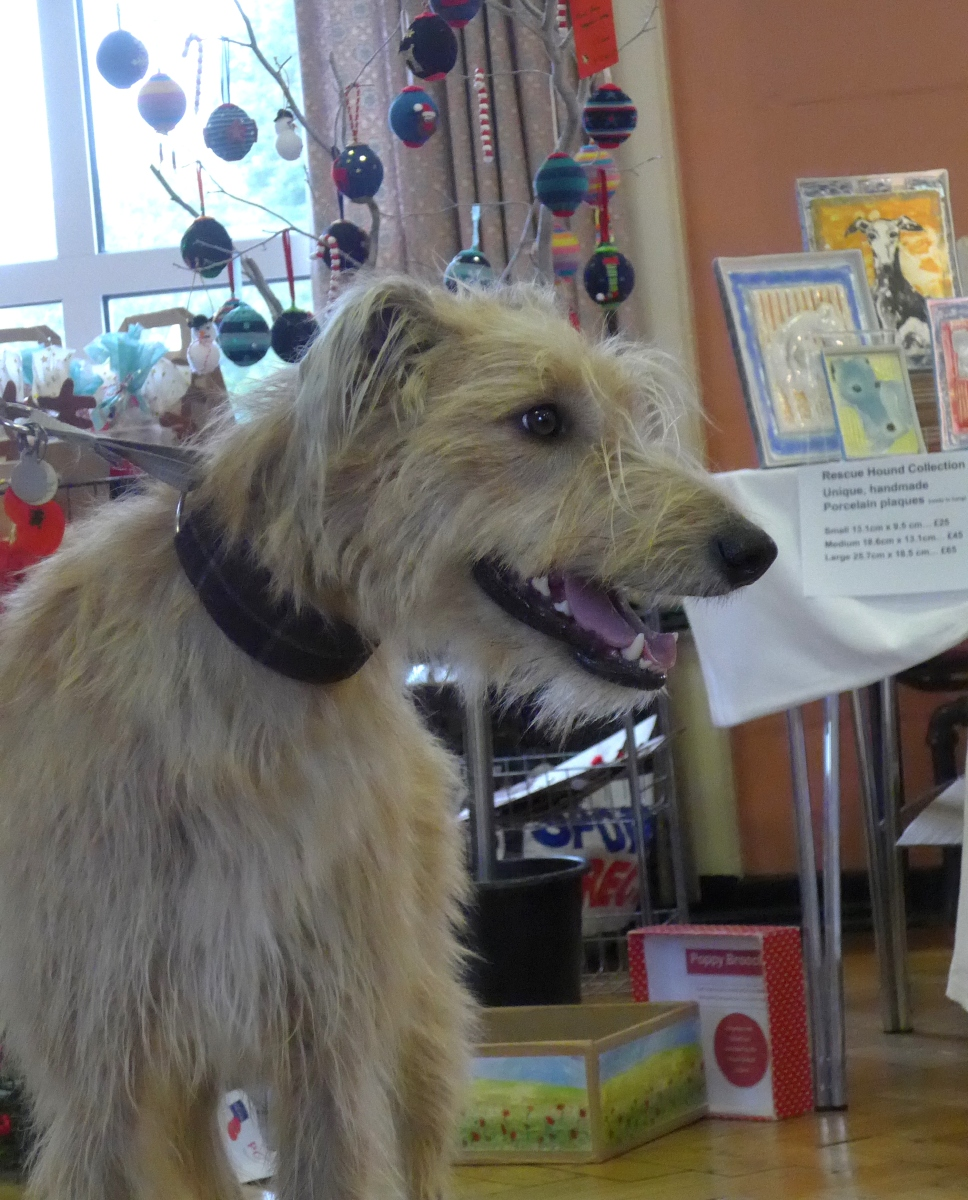 Art for sale at FEstive Fayre for Greyhound REscue with art by Diane Young