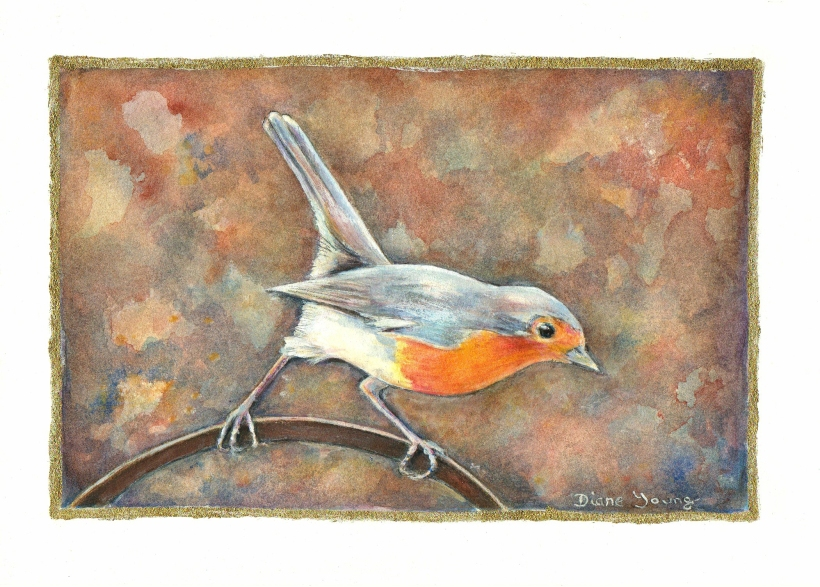 Painting of a robin by artist Diane Young