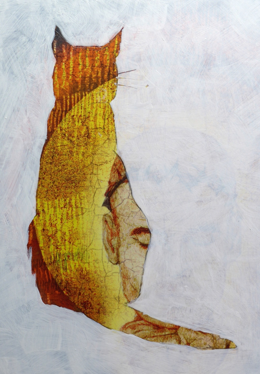 Cat in profile with abstract detail by artist Diane Young