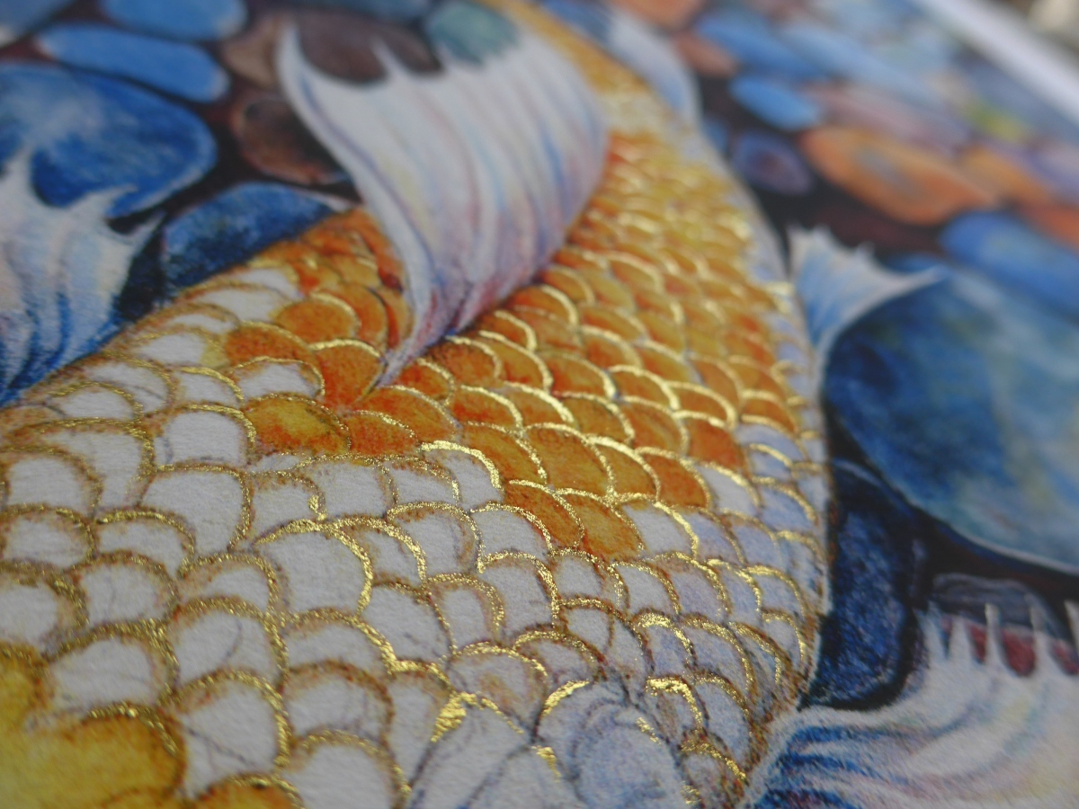 Gold embellishment to print of Koi fish by artist Diane Young
