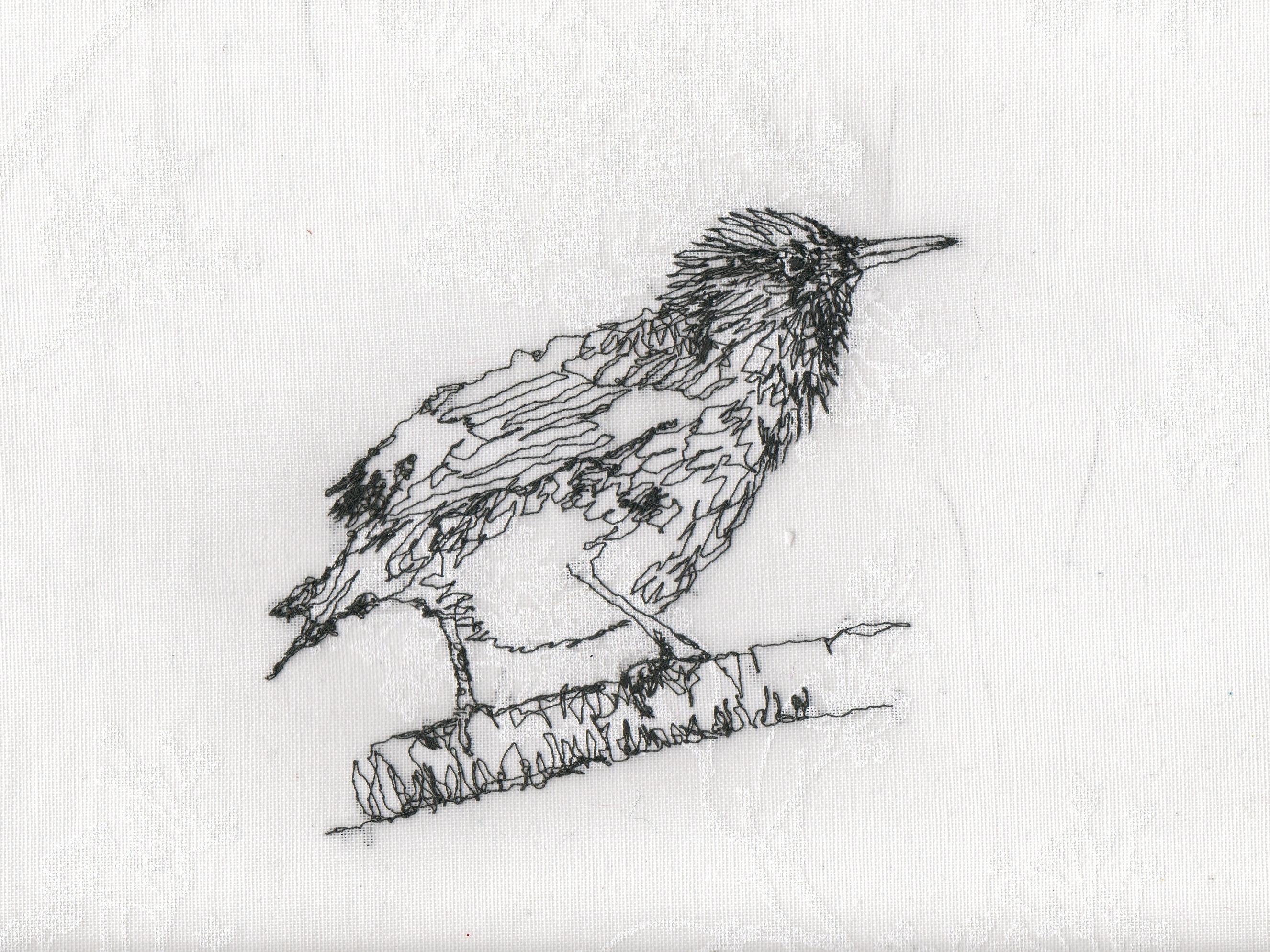Starling sewing210