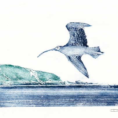 Printmaker Print showing Curlew flying over Lower Burnmouth by artist Diane Young