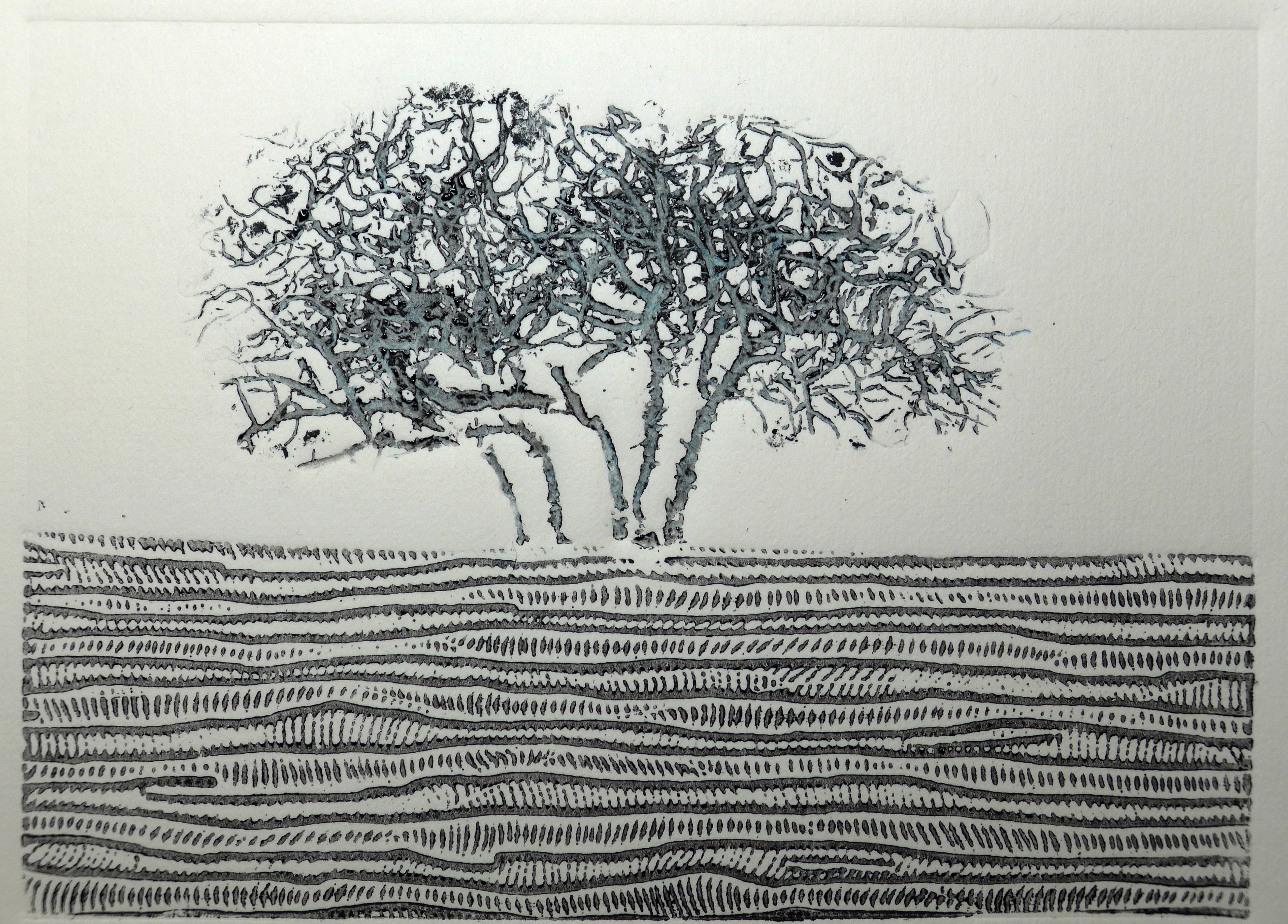 Collagraph print by artist printmaker Diane Young of Stroud tree on minchinhampton common near Tom Longs post