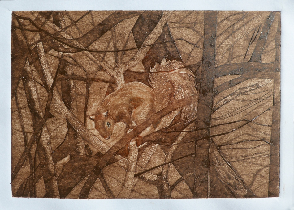 Collagraph hand pulled original print of squirrel in a tree by printmaker artist Diane Young