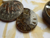 Small fossil inspiration for my art